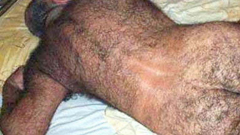 velludos peludos: