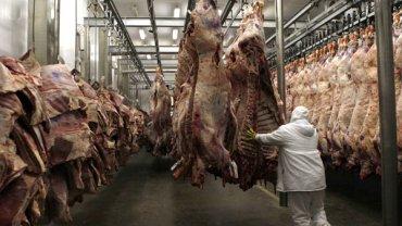 Marcado crecimiento de las exportaciones de carne