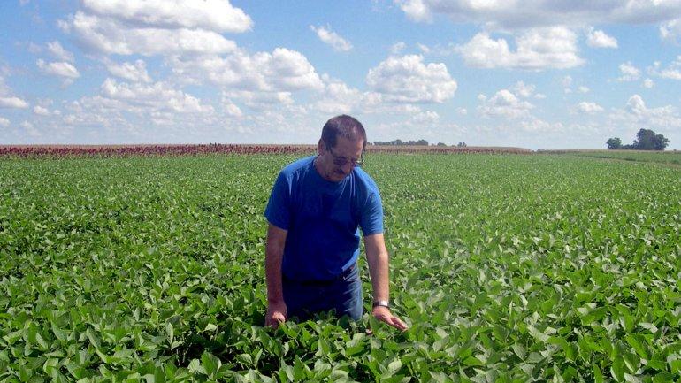 Argentina provee el 10% de la demanda china de soja