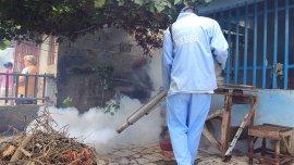 Fumigación por Chikungunya