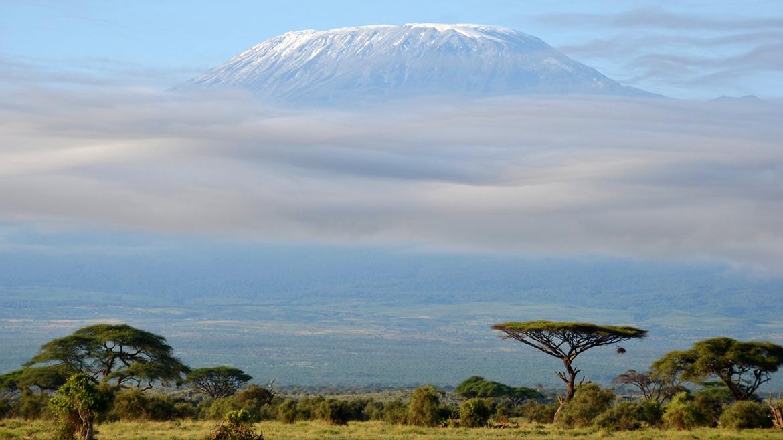 Niebla alrededor de Kilimanjaro. Parque Nacional de Amboseli, Kenia