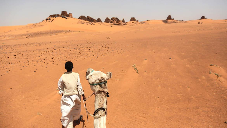 Un guía y su camello llevan a los turistas hasta las pirámides en el medio del desierto