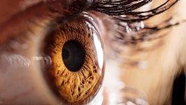 Que el ojo salte está relacionado con el estrés y los distintos estímulos vividos durante el día, que reaparecen.