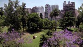 El plan Buenos Aires Verde propone construir 78 nuevas plazas, 12 grandes parques y plantar 400 mil árboles, en un período de 20 años.