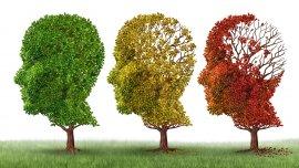 Un estudio británico descubrió en ciertos casos una acumulación de la proteína anormal que dispara el mal de Alzheimer
