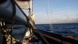 El veleroLa Sanmartiniana fue encontrado en aguas de las Malvinas.