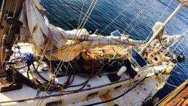En el velero La Sanmartiniana viajaban militantes de agrupaciones kirchneristas