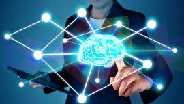 A raíz de internet, la memoria a largo plazo se ve muy dañada