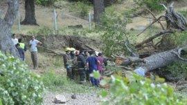 Tragedia en San Martín de los Andes por la caída de un árbol.