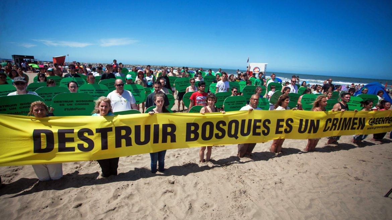 Activistas de Greenpeace y público en general realizaron hoy en Mar del Plata una actividad de concientización ante la tala indiscriminada de bosques en varias provincias argentinas y para pedir por el tratamiento en el Congreso Nacional de una ley penal de delitos forestales