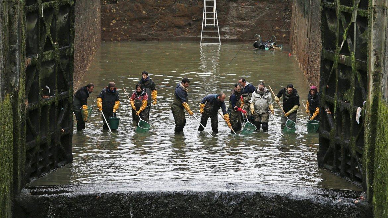 Varios empleados públicos realizan una limpieza del canal de Saint-Martin en París, Francia