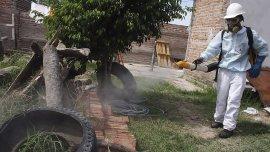 Operativo de fumigación para prevenir la propagación del mosquito Aedes Aegypti