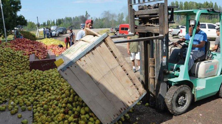 El Gobierno anunció medidas para los productores de peras y manzanas
