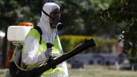 El brote de dengue preocupa a las autoridades de Misiones