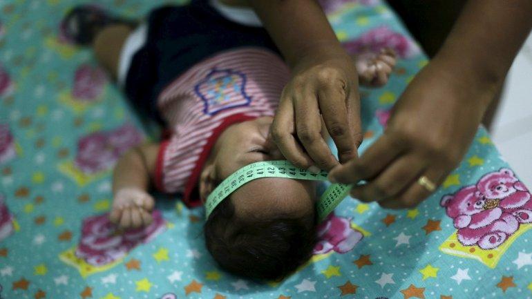 Brasil es el país con más casos de microcefalia reportados en los últimos meses