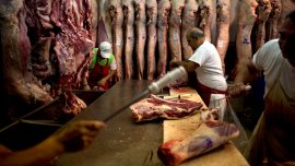 Las exportaciones de ganado vacuno pasaron de 750 mil toneladas en el año 2006 a menos de 250.000.