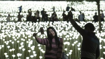 Rosas de luces led en Hong Kong.