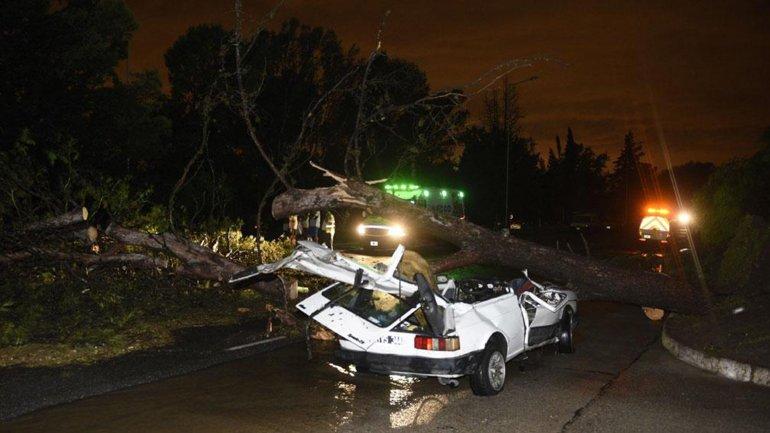 Dramático. Frenaron el auto para protegerse de la lluvia y un árbol cayó y mató a su hija de 19 meses