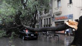 Así quedó un auto en Rosario