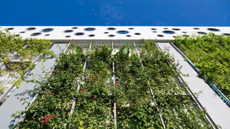 Un estudio de The American Institute of Architects reveló un aumento de construcciones eco-friendly.