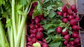 La FAO estimó un derroche mundial del 30% de la producción de alimentos