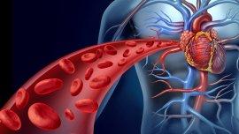 Durante la conferencia se repasaron métodos innovadores del tratamiento de enfermedades cardíacas