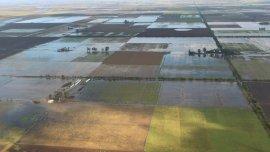 Las inundaciones en el Litoral y centro del país impedirán cosechar más de un millón de hectáreas