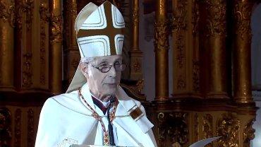 Captura de TV. El cardenal Mario Poli en el tedeum del 25 de Mayo
