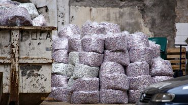 Cientos de bolsas con millones de pesos transformados en papel picado