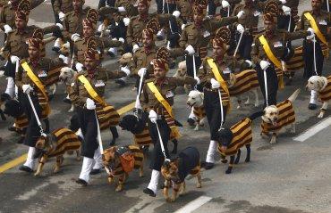 Soldados del Ejército de la India marchan con sus perros