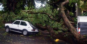 Un fuerte temporal de lluvia y viento generó graves destrozos en Paraná, Entre Ríos