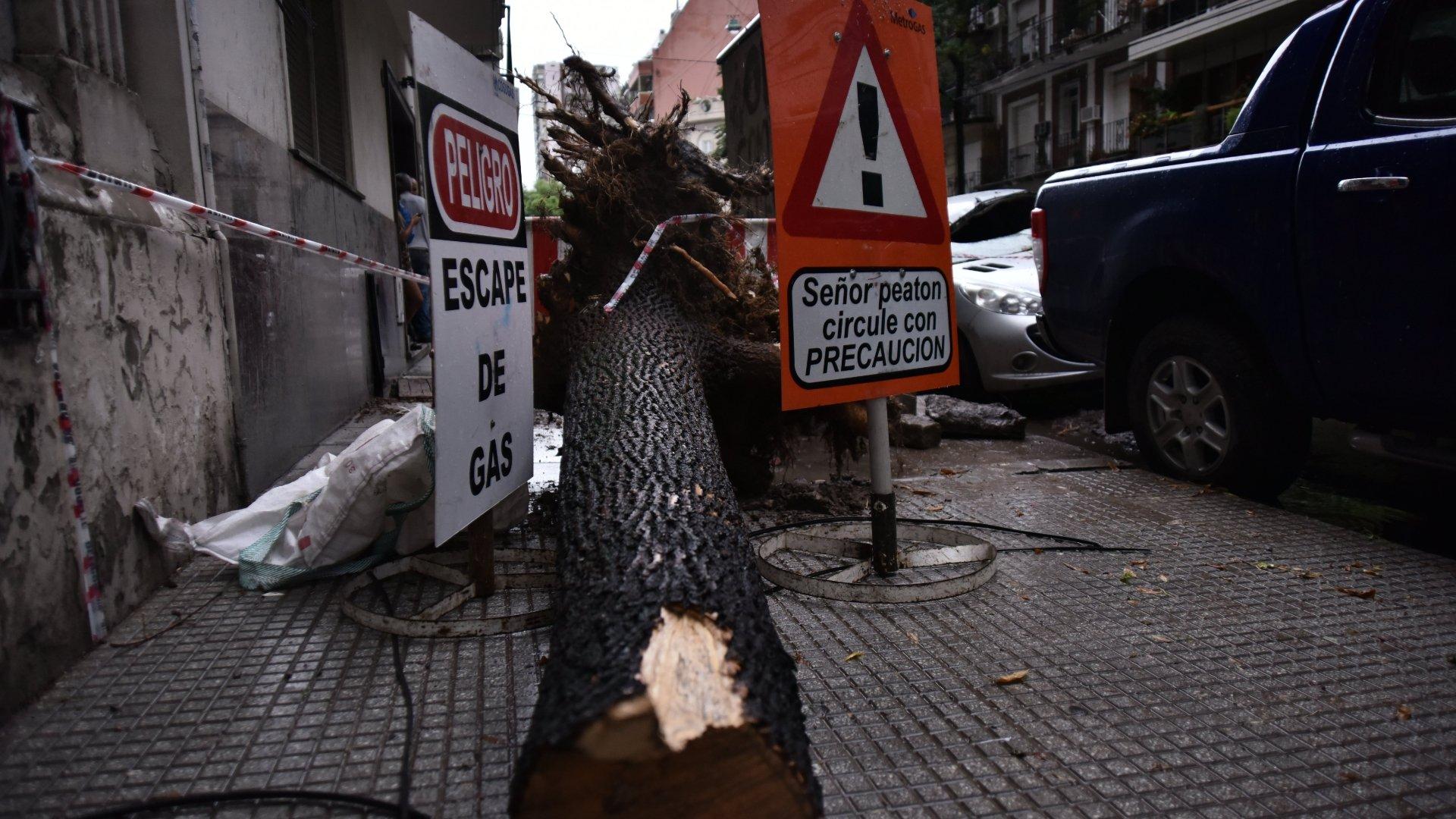 Escape de gas en Palermo tras la caída de un árbol