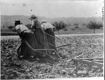 Campesinas trabajando en el campo, entre 1916 y 1917