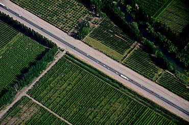 El Valle de Río negro se caracteriza por sus extensos campos frutales. Resulta sumamente atractivo visitar la zona en primavera cuando los manzanos y perales florecen.