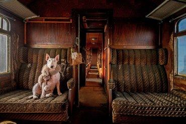 Ganador Elección de los lectores: Orient Express. Fotografiado por Alice van Kempen
